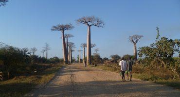 Madaschleife - Lemurenland Madagaskar Travel