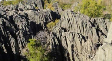 West Madagaskar - Lemurenland Madagaskar